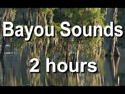 Bayou Nature Sounds For Sleep And Relaxing