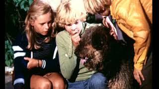 Фото Песня из фильма Приключения Электроника 1979 г.