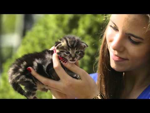Mera Tiernahrung - Bernd Vos erhält den Unternehmerpreis 2015
