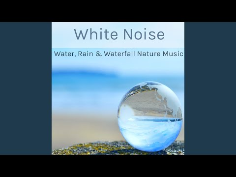 Top Tracks - Whte Noise Masters
