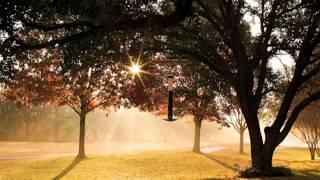 Handel Organ Concerto Op 4, No 5, Guitar Transcription, John Williams