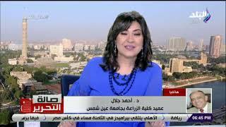 عميد كلية الزراعة بجامعة عين شمس يكشف تفاصيل الـ 62 ألف فدان صوب زراعية بالصعيد