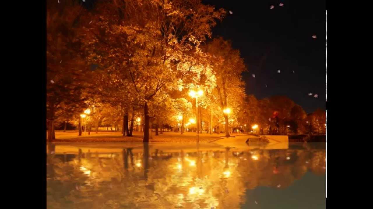 Футаж Осень в парке - YouTube