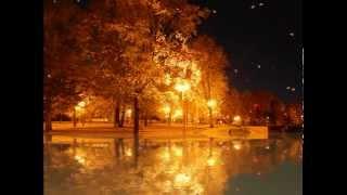 Футаж Осень в парке