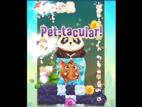 Pet Rescue Puzzle Saga Level 255   AHOK GA