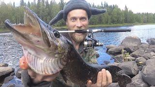 Вертушки творят чудеса Рыбалка в Карелии щука на спиннинг