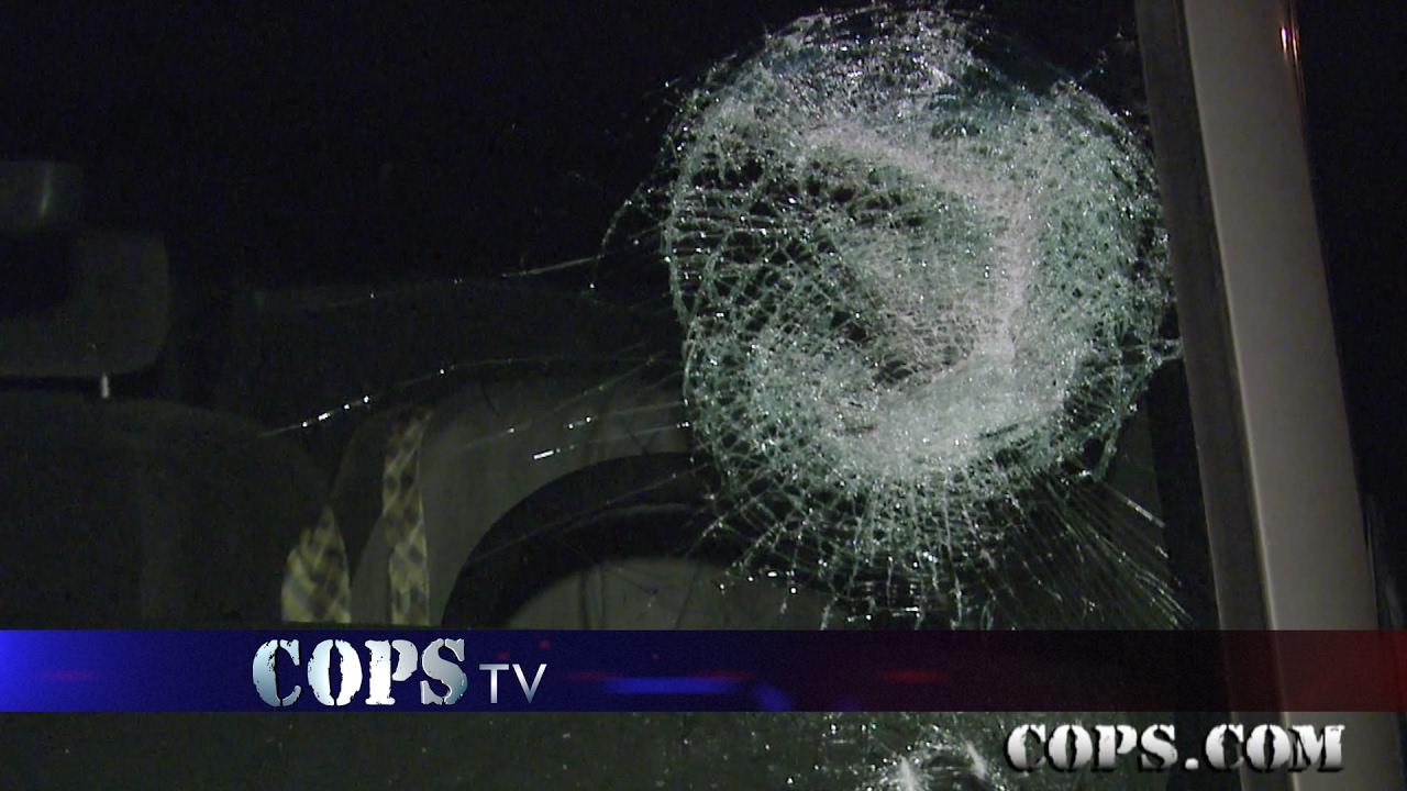 Rock Star Show 2930 Cops Tv Show