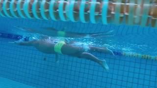 Total Immersion魚式游泳中部地區~楊尚霖教練 《水上、水下、慢動作》視頻