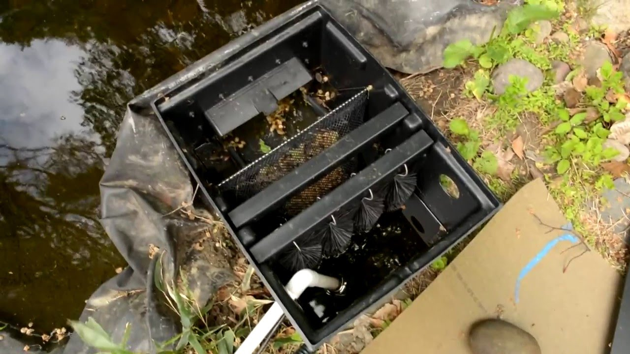 Laguna skimmer filter koi pond upgrade retrofit youtube for Laguna koi ponds