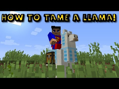 how-to-ride-and-tame-a-llama-in-minecraft-1.12.2!!!