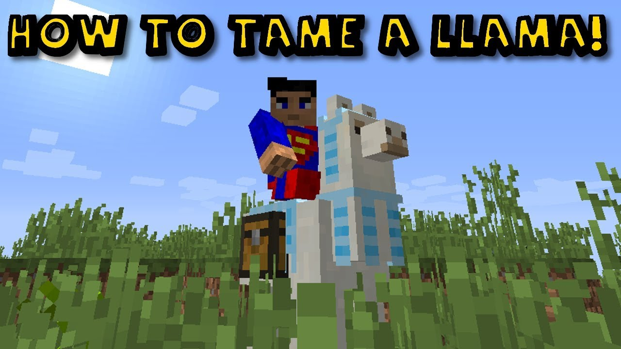 How To Ride And Tame A Llama in Minecraft 112.11212.12!!!