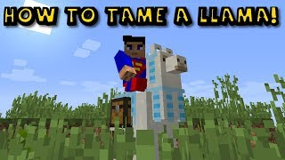 How To Ride Aฑd Tame A Llama in Minecraft 1.12.2!!!