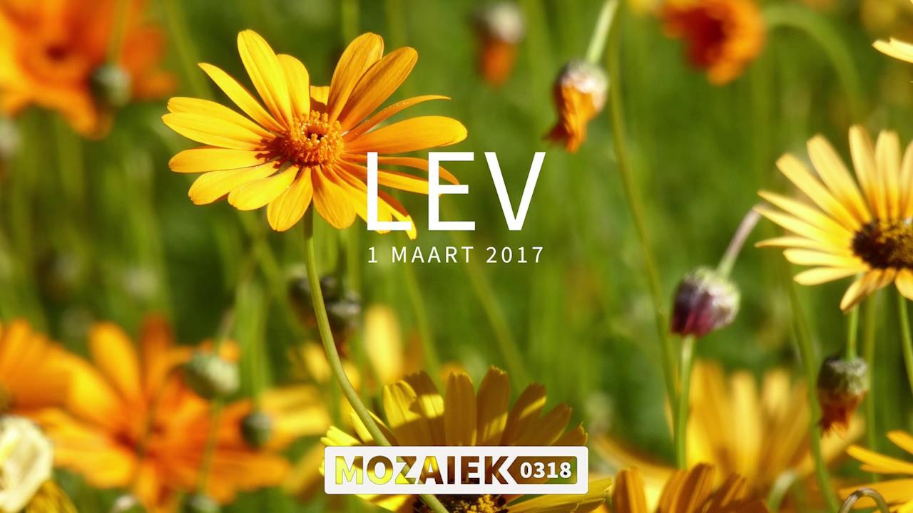 LEV-avond 01/03/2017 - Discipelschap en Gerechtigheid - Deel 2 - Tiemen Westerduin