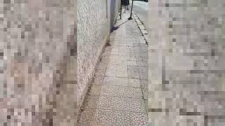 Corsa ad ostacoli pe run disbile a Manduria