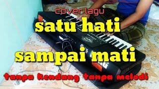 Download lagu SATU HATI SAMPAI MATI tanpa kendang cover irma MP3