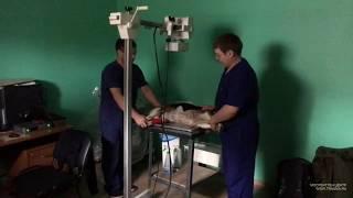 Тестирование DR-панели