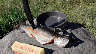 Catch and Cook and Camp Episode 2: WILD TROUT!!