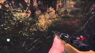 Call of Duty: Black Ops – Shangri-la Easter Egg Song