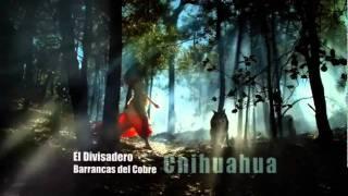 Destinos Mexico, Coahuila, Sonora, Chiapas, Quintana Roo, Tamaulipas