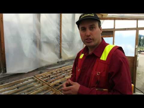 Gold Reach geo Dr. Shane Ebert shows off Ootsa drill core