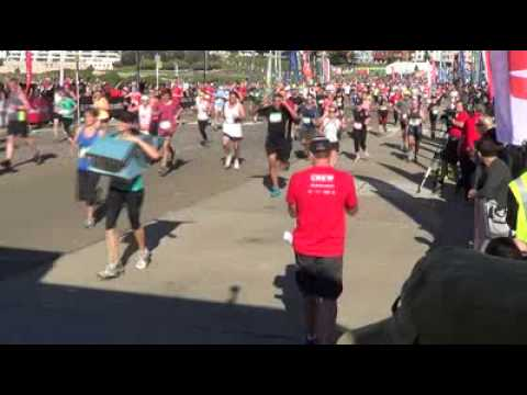 IFAW whale crosses line 2013 City2Surf