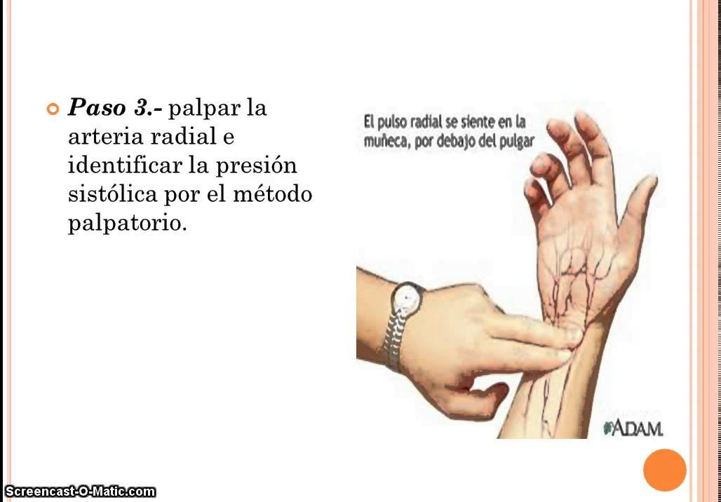 metodo correcto para tomar la presion arterial