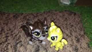 Tigerclaw asks Goldenflower to be his mate
