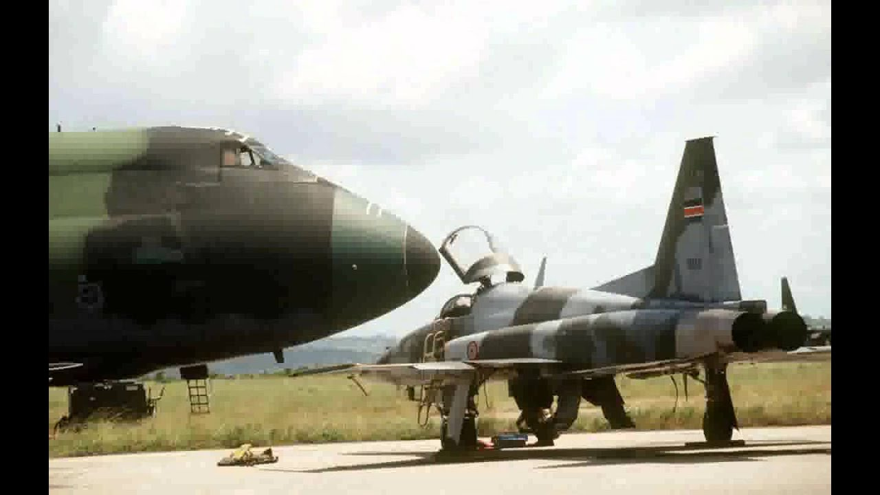 Northrop Grumman F-5 Tiger Military Jet Features Photos