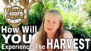 How Will YOU Experience The Harvest?  THE MATRIX GAME of LIFE