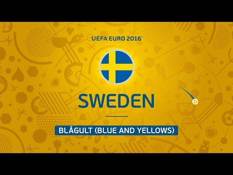 Sweden at UEFA EURO 2016 in 30 seconds