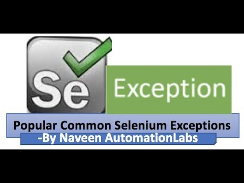 Popular Common Selenium Exceptions