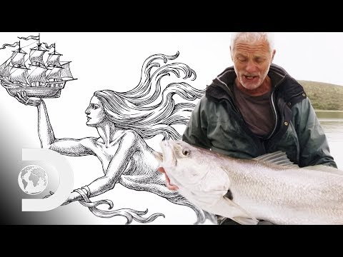Jeremy Searches For The Creature Behind Mermaid Legends | Jeremy Wade's Dark Water