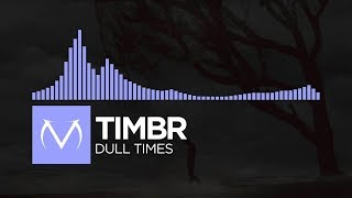 [Future] - Timbr - Dull Times