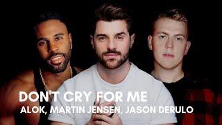 Baixar Alok, Martin Jensen, Jason Derulo - Don't Cry For Me (Lyrics)