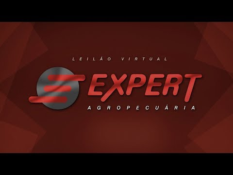 Lote 11   Fuleiro EXPERT   EXPT 100 Copy