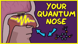 You Use Quantum Physics to Smell
