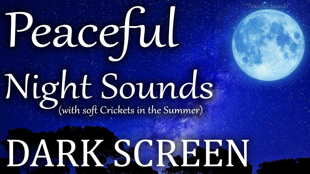 Relaxing Nature Sounds with Crickets in the Summer Night. White Noise, BLACK SCREEN to fall asleep