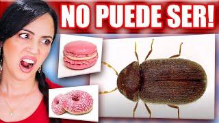 10 DATOS CURIOSOS DE LA COMIDA! 😱 De Dónde Sale el Color Rosa?! 😭 Sandra Cires Play Reaccionando 🔥