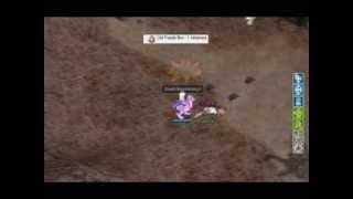 MVPing with Crusader's Shield Boomerang (Ragnarok Online)