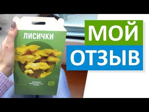 грибница для выращивания грибов купить в коробке