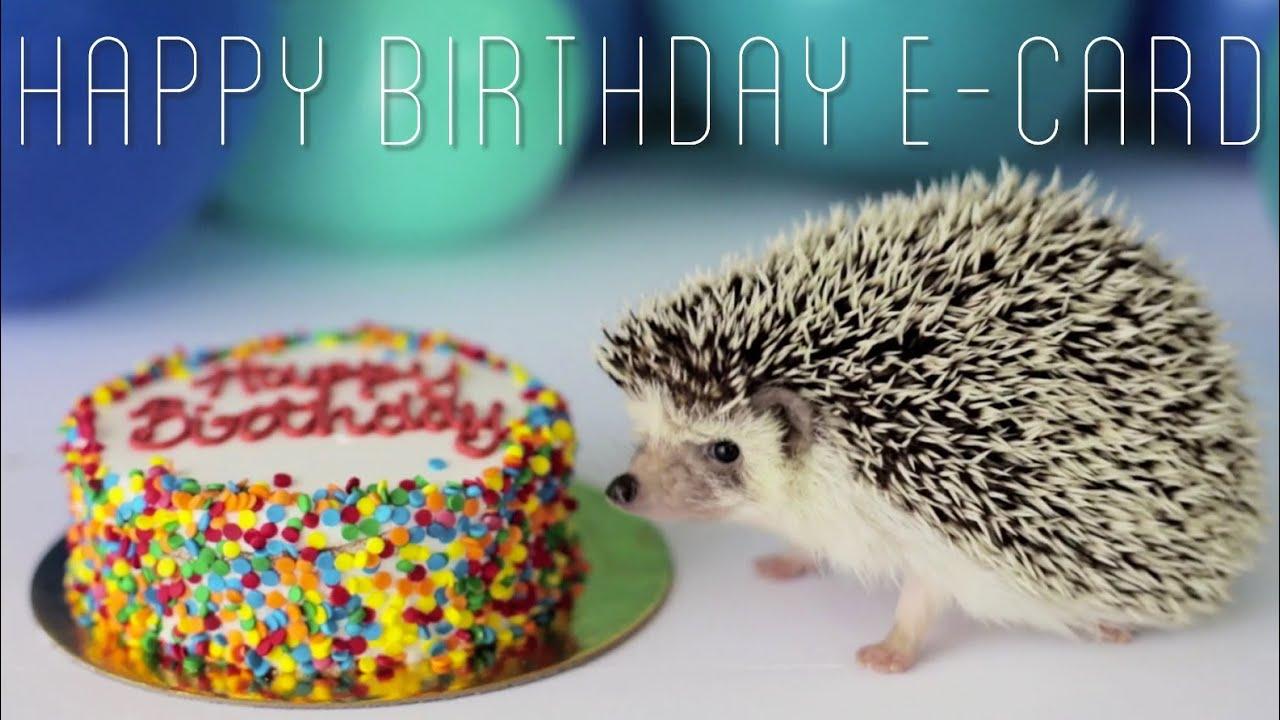 Happy Birthday Harley Ecard Youtube