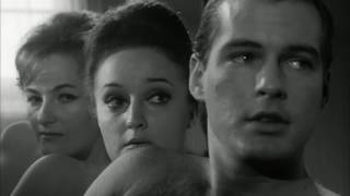 Lost Joe Sarno Film Found The Naked Fog 1966