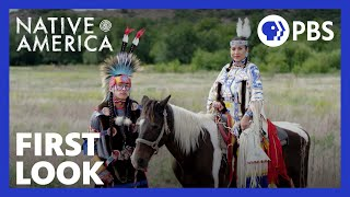 native americans in the united states (ethnicity)