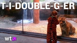 Boy Dressed as Tiger Plays with Tiger Cub at the Zoo | What's Trending Now