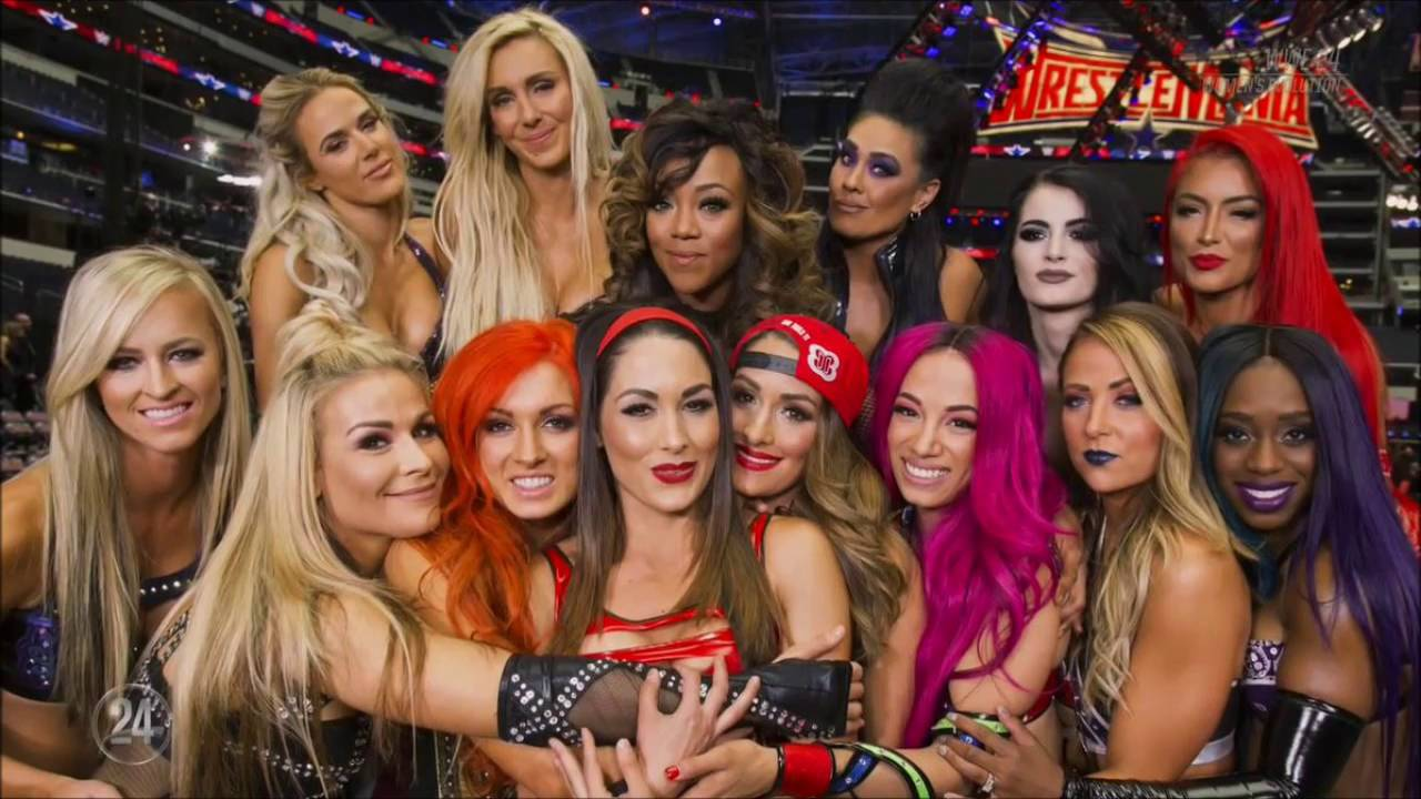 Image result for wwe women's evolution