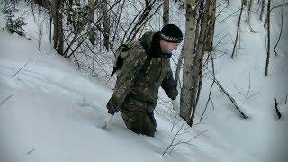 Лыжная прогулка #151