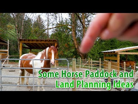 Some Horse Paddock And Land Planning Ideas