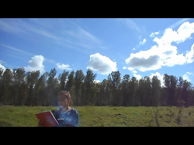 Изображение предпросмотра прочтения – АнгелинаБуда читает произведение «Туча» А.С.Пушкина