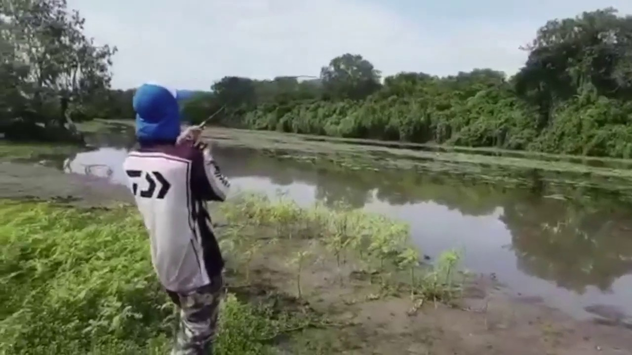 506170d67 Daniel hooks a Crocodile (Northern Territory