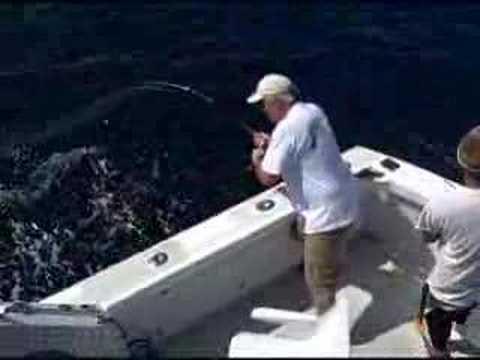 Amberjack Fishing Outer Banks North Carolina